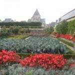 French garden blog photo