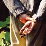 Stanley Kunitz garden hands